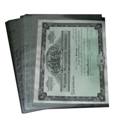 1 Pocket Archival Polyproplyene Pages, Clear