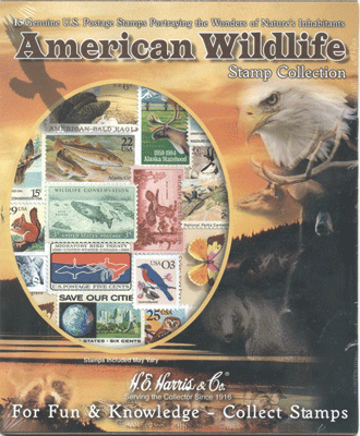 American Wildlife Collection