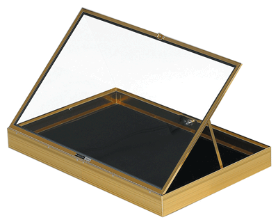 Aluminum Display Case (locking) - Drop Ships from Vendor
